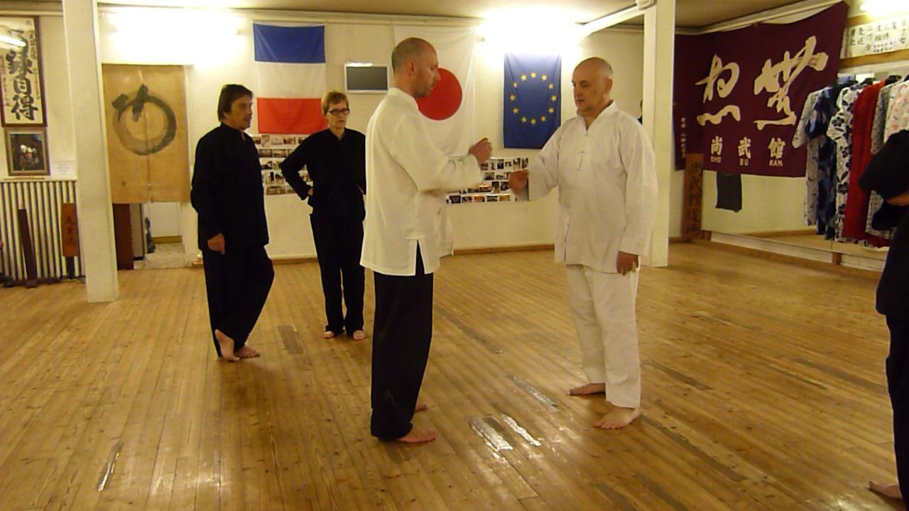 les cours de tai chi ont repris   corps et mouvement - s u00e9verine hamon - cv - articles